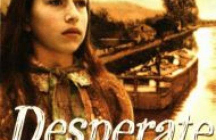 Desperate Journey book cover