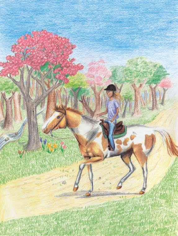 Seahorse riding a horse