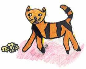 Inspiration yellow cat