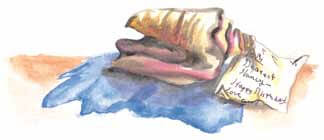 Blue conch shell