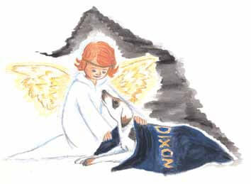 Navy-Blue Cloth— Words and Pain an angel with a dog