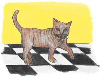 Not Quite as Easy as Pie cat walking