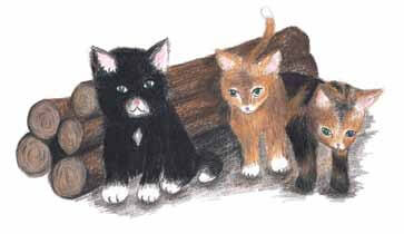 Logs cats with kittens