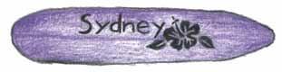 The Real Winner purple surfboard