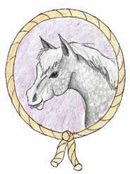 Silent Friends a horse