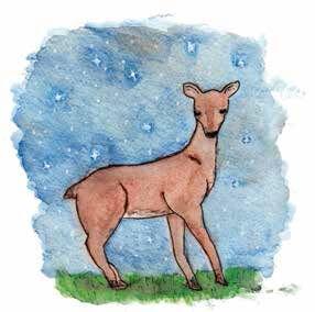 Daughter of Bastet deer