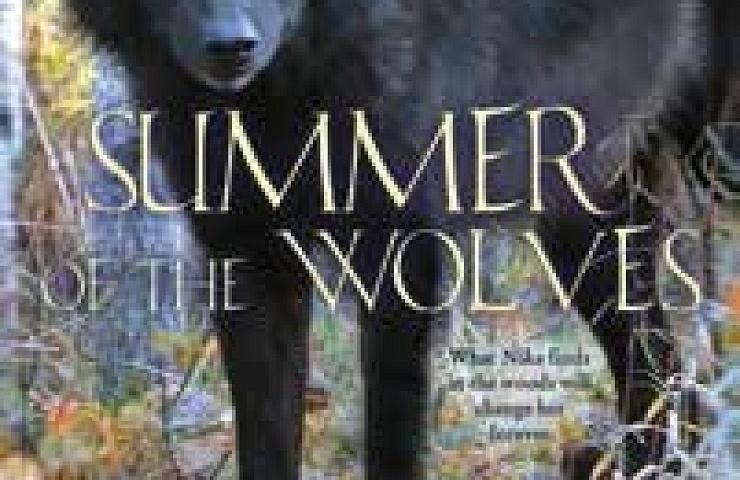 Summer of the Wolves book cover