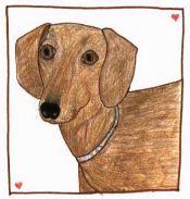 A Winter Walk brown dog