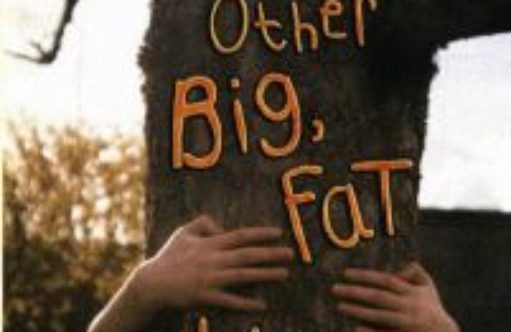 Home, and Other Big Fat Lies book cover