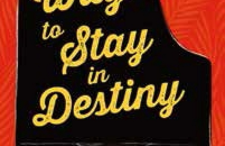 The Way to Stay in Destiny book cover
