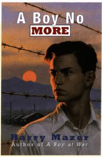 A Boy No More book cover