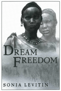 Dream Freedom book cover