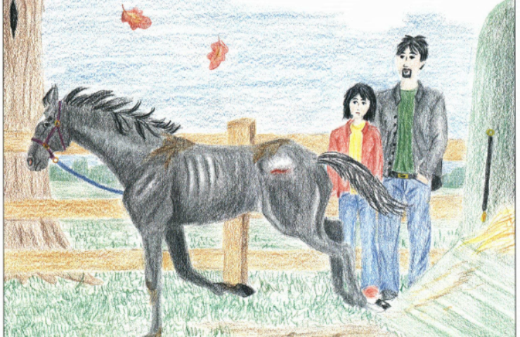 Saving Frizbee thin horse with wound