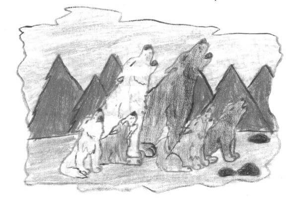Lakota animals howling