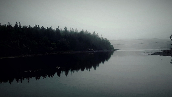 Mist at the Lake
