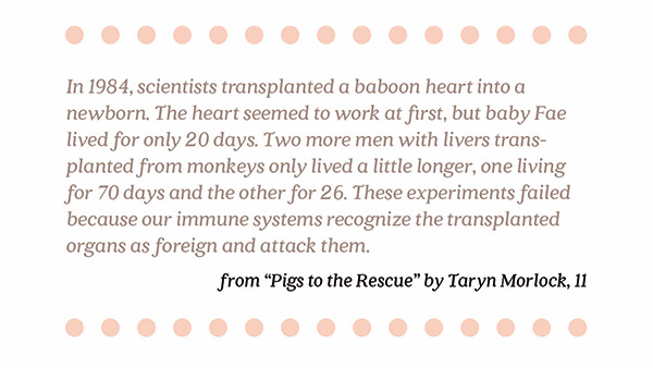 Pigs to the Rescue   By Taryn Morlock