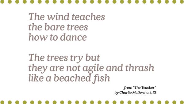 The Teacher  By Charlie McDermott