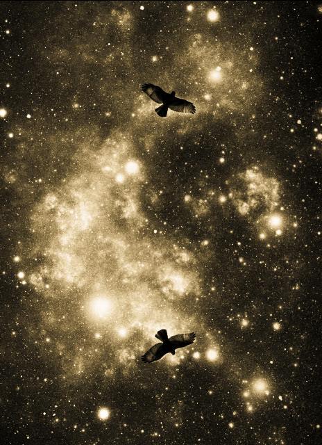 Flight Through the Cosmos